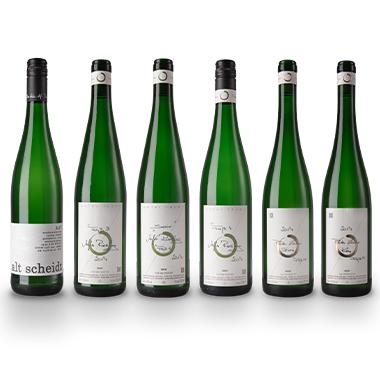 Lauer Wein Probepaket B