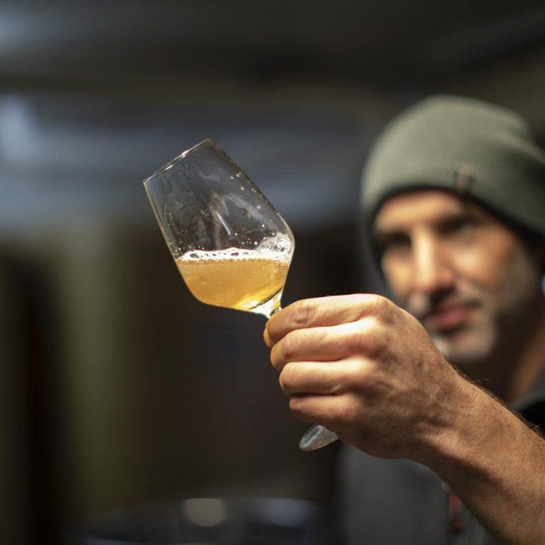 Rieslingweinprobe im Weingut Peter Lauer