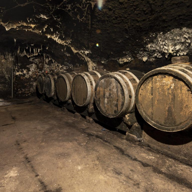 Wine cellar at the Peter Lauer Winery on the Saar