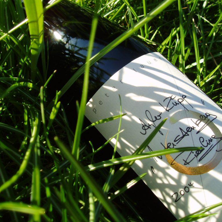 Unterstenberg Gras